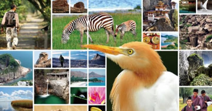 訂閱通訊 Registration | 綠恒生態旅遊 Eco Travel